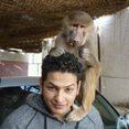 Dating AhmedRoushdy